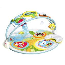 Skip Hop Explore & More Amazing Arch Baby Play Mat Activity
