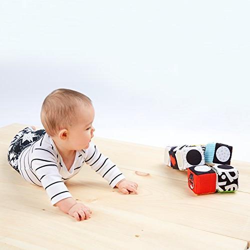 Baby Einstein High Contrast Block Toy, and