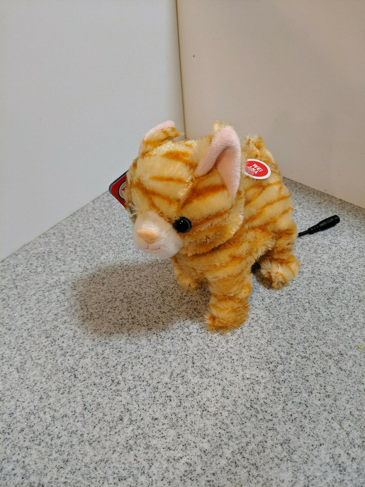 Switch puppy Kitten, toy, Needs