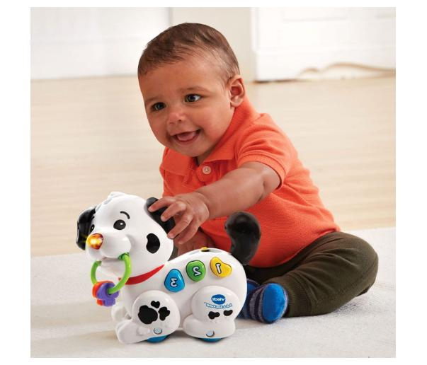 VTech and Puppy Toys Baby Skills Adventure Fun