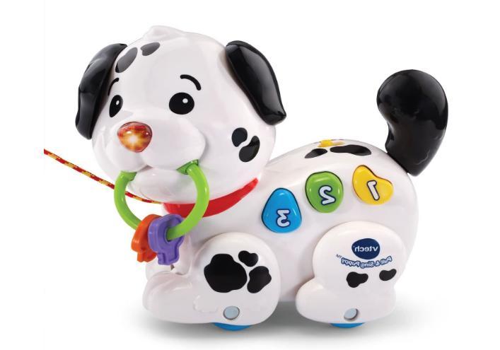 VTech and Puppy Skills Fun