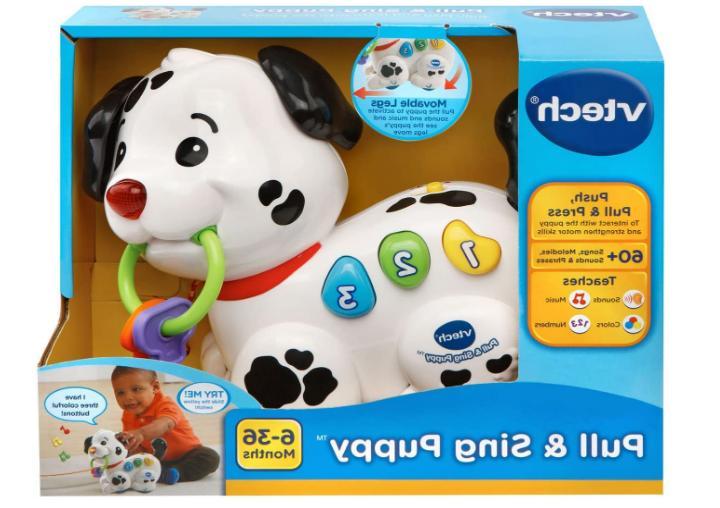 VTech Pull Puppy Baby Skills Adventure